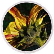 Sunflower Profile Round Beach Towel