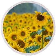 Sunflower Rain Sussex Nj Round Beach Towel