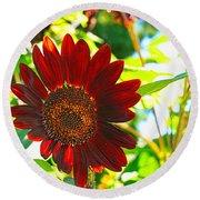 Sunflower - Red Blazer - Luther Fine  Art Round Beach Towel