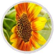 Sunflower Side Portrait Round Beach Towel