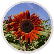 Sunflower Sky Round Beach Towel by Kerri Mortenson