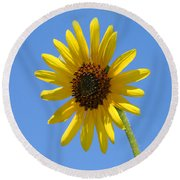 Sunflower Square Round Beach Towel