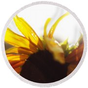 Sunflower Sunlight Round Beach Towel
