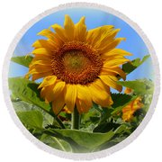 Sunflower Sunshine Round Beach Towel