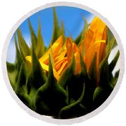 Sunflower Teardrop Round Beach Towel