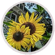 Sunflower Under The Gables Round Beach Towel