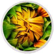 Sunflower Volunteer Round Beach Towel