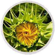 Sunflower Whirl Round Beach Towel