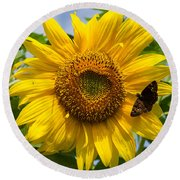 Sunflower With Butterfly Round Beach Towel