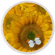 Sunflower With White Butterfly Round Beach Towel