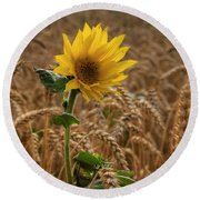 Sunflowers At Corny Round Beach Towel