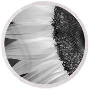 Sunflowers Beauty Black And White Round Beach Towel