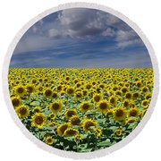 Sunflowers Forever Round Beach Towel