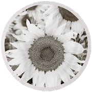 Sunflowers In Back And White Round Beach Towel