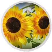Sunflowers In Full Bloom Round Beach Towel