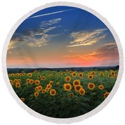 Sunflowers In The Evening Round Beach Towel