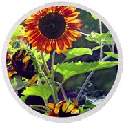 Sunflowers In The Park Round Beach Towel