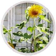 Sunflowers In The Window Round Beach Towel