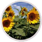 Sunflowers Round Beach Towel by Kerri Mortenson