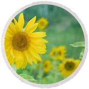 Sunflowers Vintage Dreams Round Beach Towel