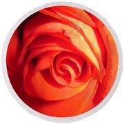 Sunkissed Orange Rose 11 Round Beach Towel