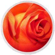 Sunkissed Orange Rose 6 Round Beach Towel