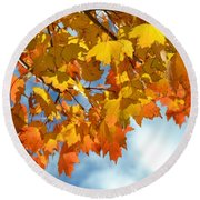 Sunlight And Shadow - Autumn Leaves Two Round Beach Towel