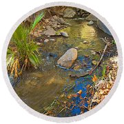 Sunlight On Andreas Creek In Indian Canyons-ca Round Beach Towel