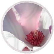 Sunlight On Magnolia Blossom Round Beach Towel