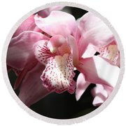 Sunlight On Pink Orchid Round Beach Towel