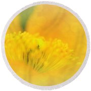 Sunlight On Poppy Abstract Round Beach Towel