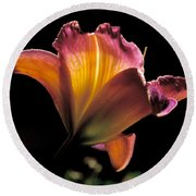 Sunlit Lily Round Beach Towel by Rona Black