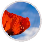 Sunlit Poppy Round Beach Towel