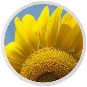 Sunlit Sunflower Round Beach Towel