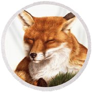 Sunnin' Red Fox Round Beach Towel