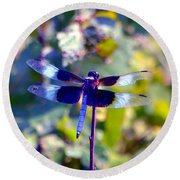 Sunning Dragonfly Round Beach Towel