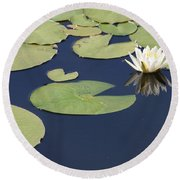 Sunny Lily Pond Round Beach Towel