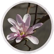 Sunny Pink Magnolia Blossom Round Beach Towel