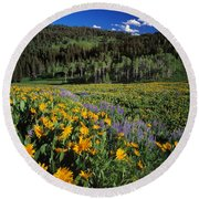 Sunny Spring Day Round Beach Towel