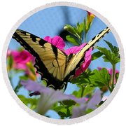 Sunny Tiger Swallowtail  Round Beach Towel