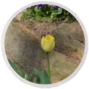 Sunny Yellow Tulips Series  Picture B Round Beach Towel