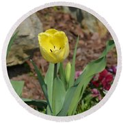 Sunny Yellow Tulips Series  Picture C Round Beach Towel
