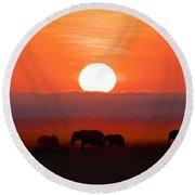 Sunrise Elephants Round Beach Towel