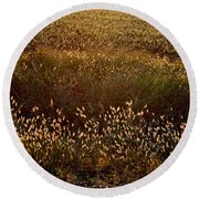 Sunrise On Wild Grass Round Beach Towel