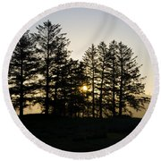 Sunrise Shines Through The Pines Round Beach Towel