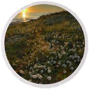Sunset At The Beach  White Flowers On The Sand Round Beach Towel by Guido Montanes Castillo