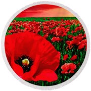 Sunset California Poppy Preserve Round Beach Towel