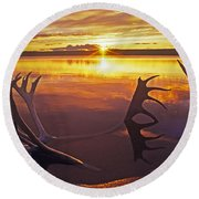 Sunset On Caribou Antlers In Whitefish Lake Round Beach Towel