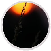 Sunset Seed Silhouette Round Beach Towel