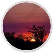 Sunset With Octopus Tree Round Beach Towel